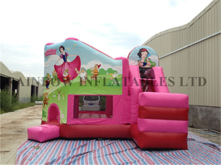 Commercial Durable Cinderella Theme Inflatable Jumping Castle