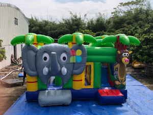 Inflatable Jungle Kids Jumping Bouncy Combo