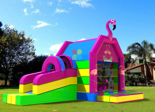 Inflatable Pink Jumping Castles
