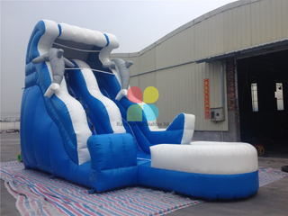 Inflatable Ocean Dolphin Wave Water Slide