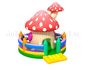 RB01028(6x5m)Inflatable mushroom jumping castle bouncer