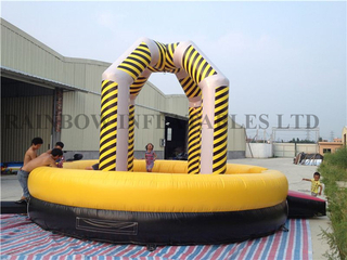 Inflatable Wrecking Ball Game Hot Sale