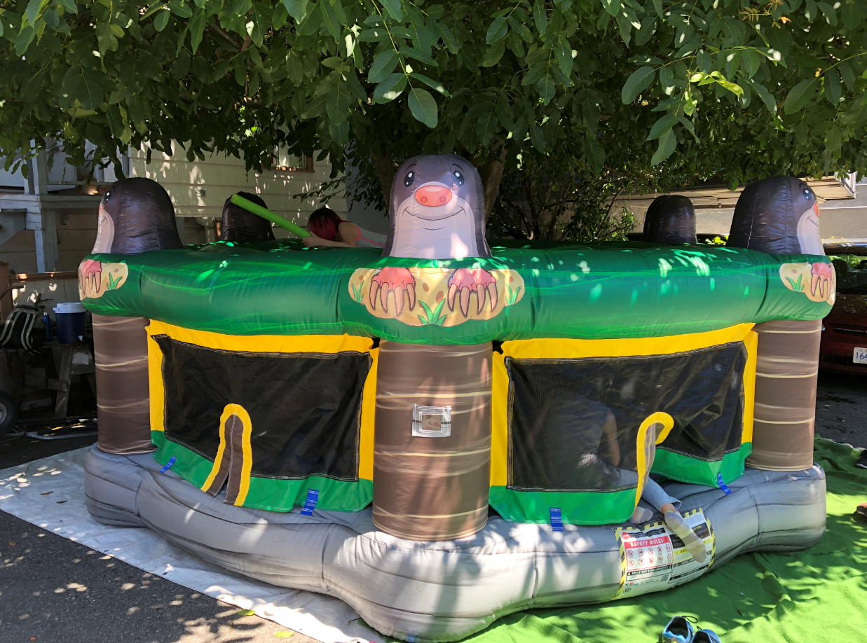 Inflatable Whack a Mole Inflatable