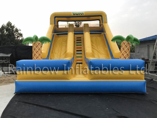 RB6090(8x5x7m) inflatable Marine romance double dry slide
